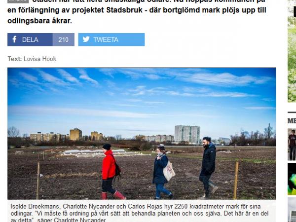 """Sydsvenskan: """"Urbana jordbrukare vill skapa bykänsla"""""""
