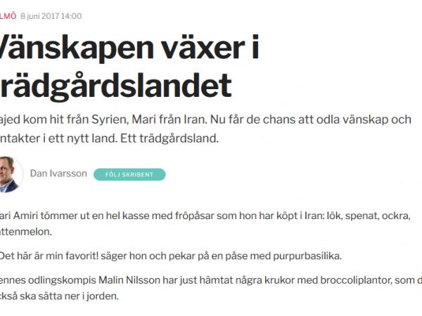"""Sydsvenskan: """"Vänskapen växer i trädgårdslandet"""""""